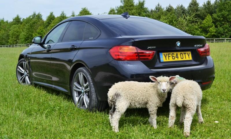 BMW 45 Series