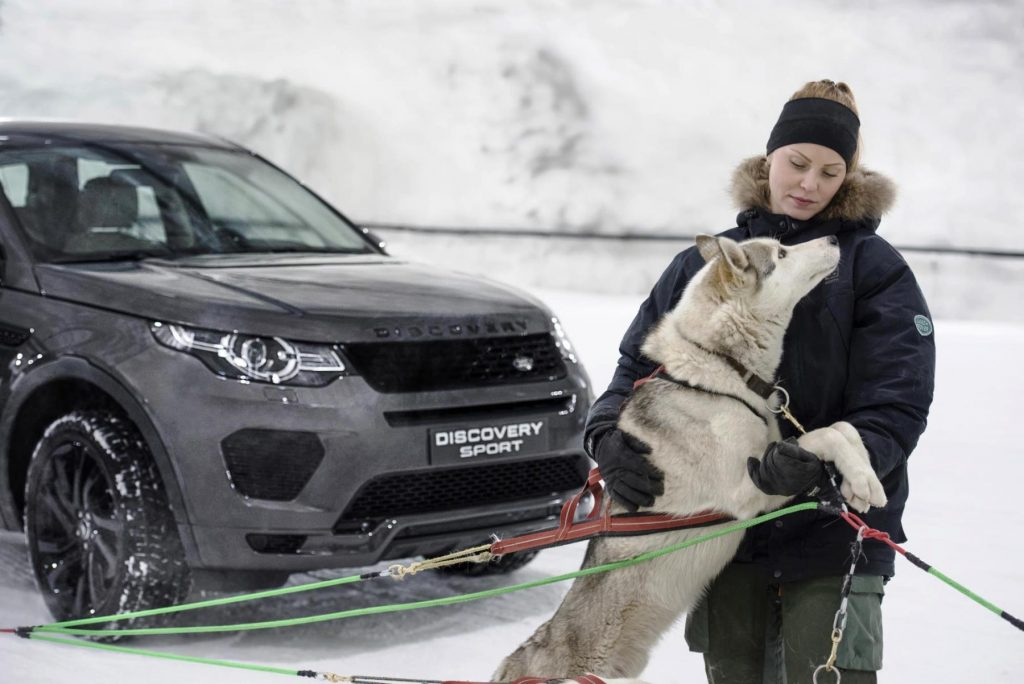 Laura Kääriäinen and one of her sled dogs