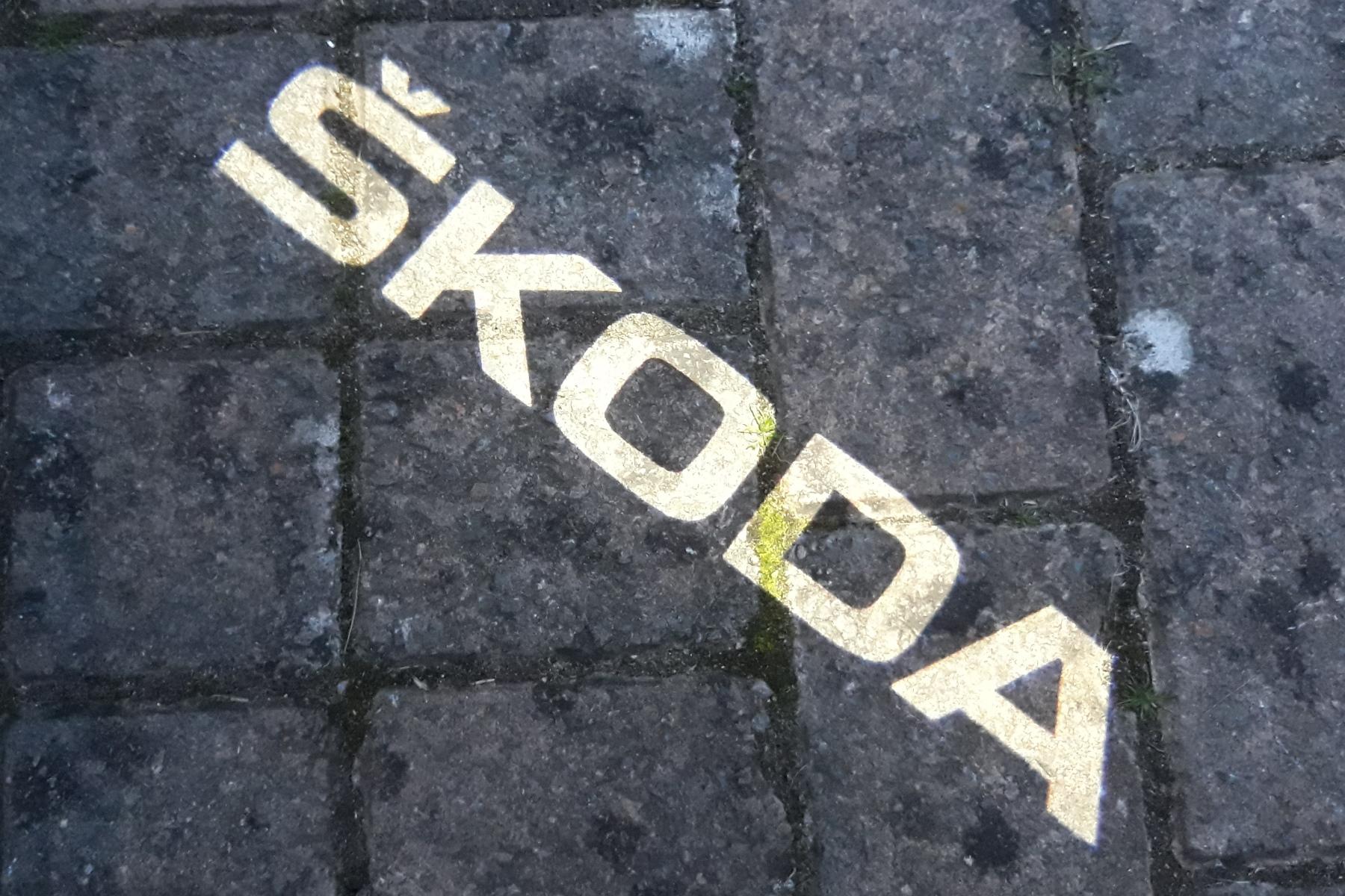 Skoda Karoq Scout puddlelight