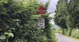 Obscured road sign - GEM Motoring Assist