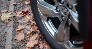 Toyota-RAV4-autumn-leaves