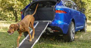Dog-friendly Jaguar F-Pace