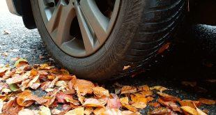 BMW-I-Series-Goodyear-Vector-4Seasons-Gen-3-tyres-autumn