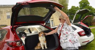 Mazda CX-5 voted most dog-friendly car