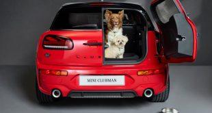 Dog-friendly-MINI-Clubman